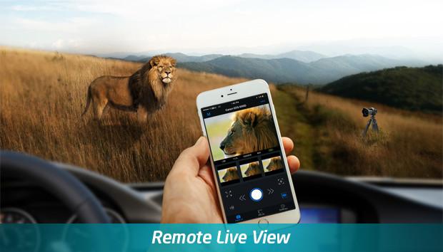 Case Camera Air Live View