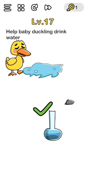 A screenshot of the Brain Out Answer for Lv. 17. There is a duck and other random objects in the photo.